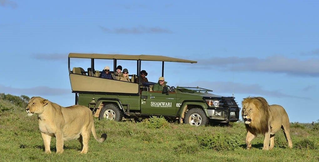 wildlife tourism Destinations Around the World. World's Best Places to Visit 2018